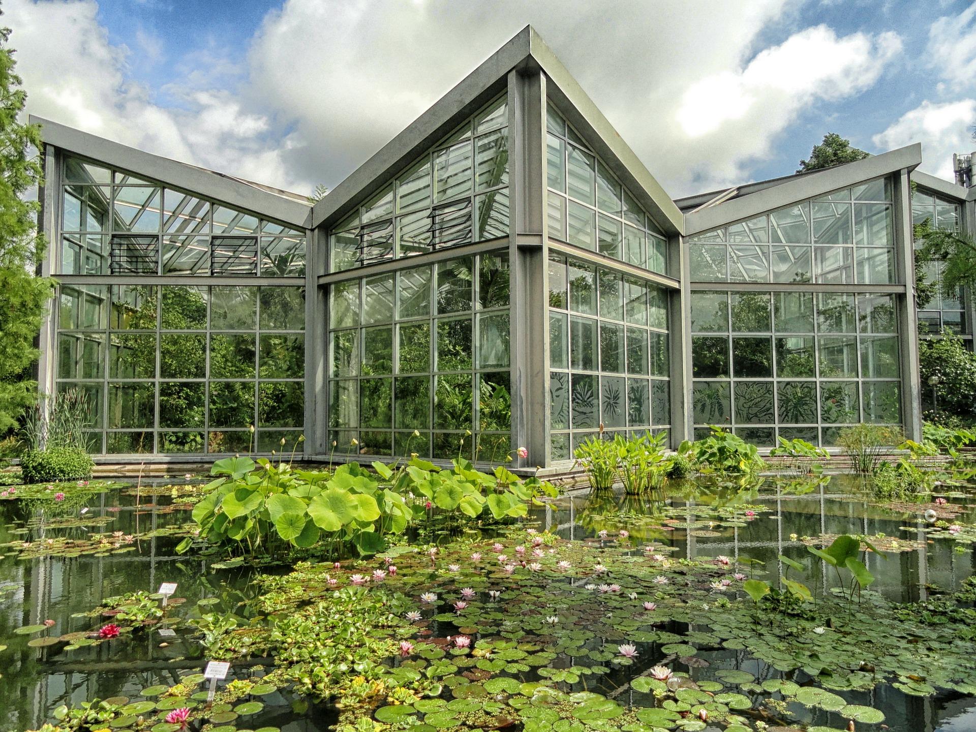 Botanischer Garten Frankfurt, Herkunft Pixabay