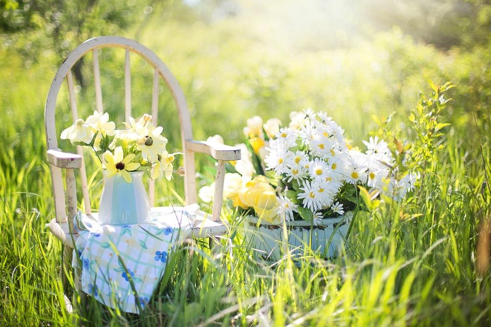 Einblicke in den privaten Rückzugsort Garten