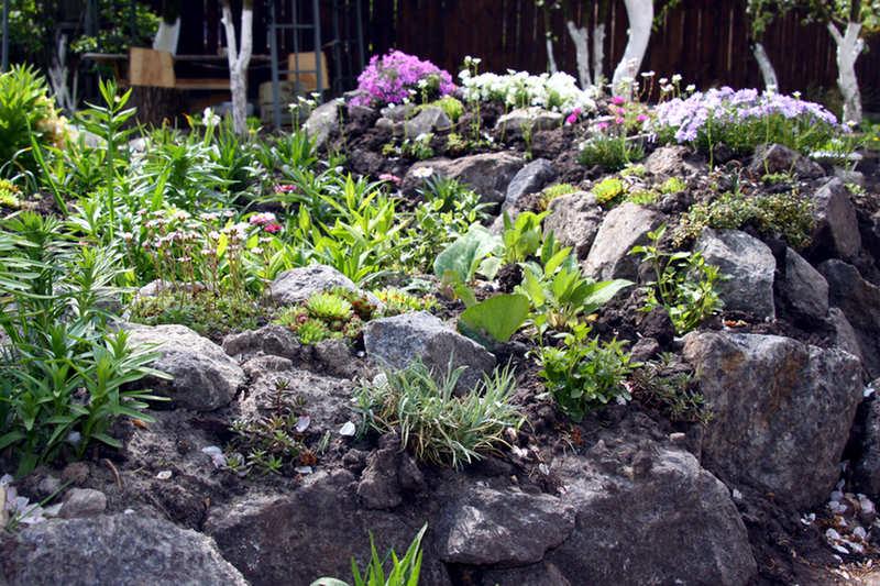 Steinmauer im Naturgarten